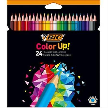 KURU BOYA  BİC COLOR UP 24 RENK